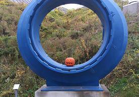 pumpkin in sculpture