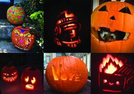 grid of 6 decorated pumpkins
